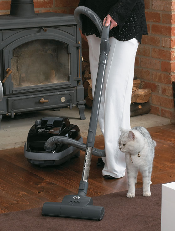 Enjoy a fur-free home with these cleaning tips